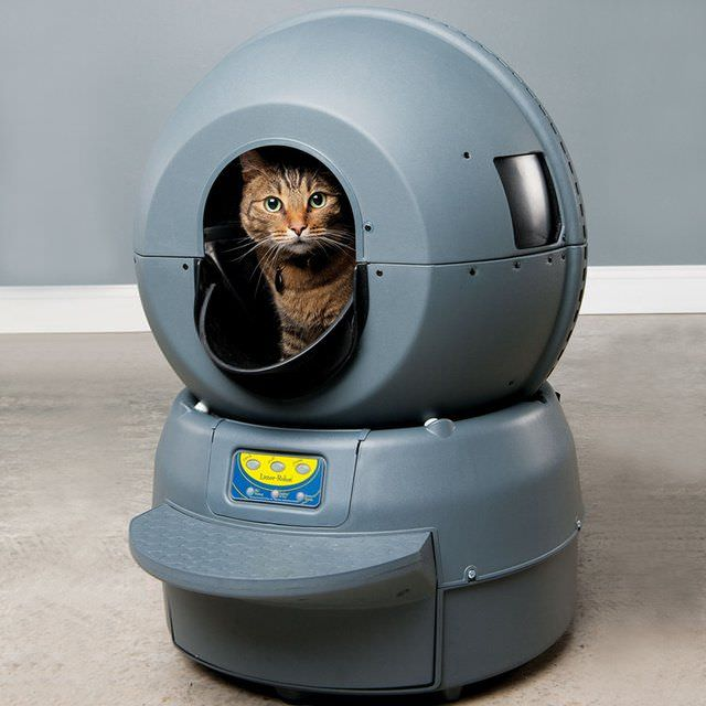 Home Gadget  Litter Robot