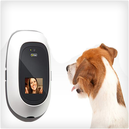 5 Coolest Gadgets & Gizmos for Dogs