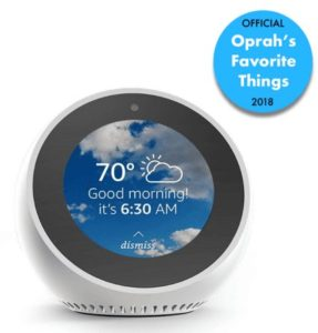 Echo Spot in White