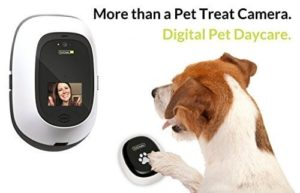 PetChatz Pawcall 2-Way Video Pet Treat Camera & Dispenser