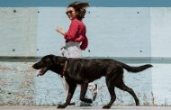 GPS PET TRACKERS THAT WILL KEEP YOUR FURRY FRIEND SAFE